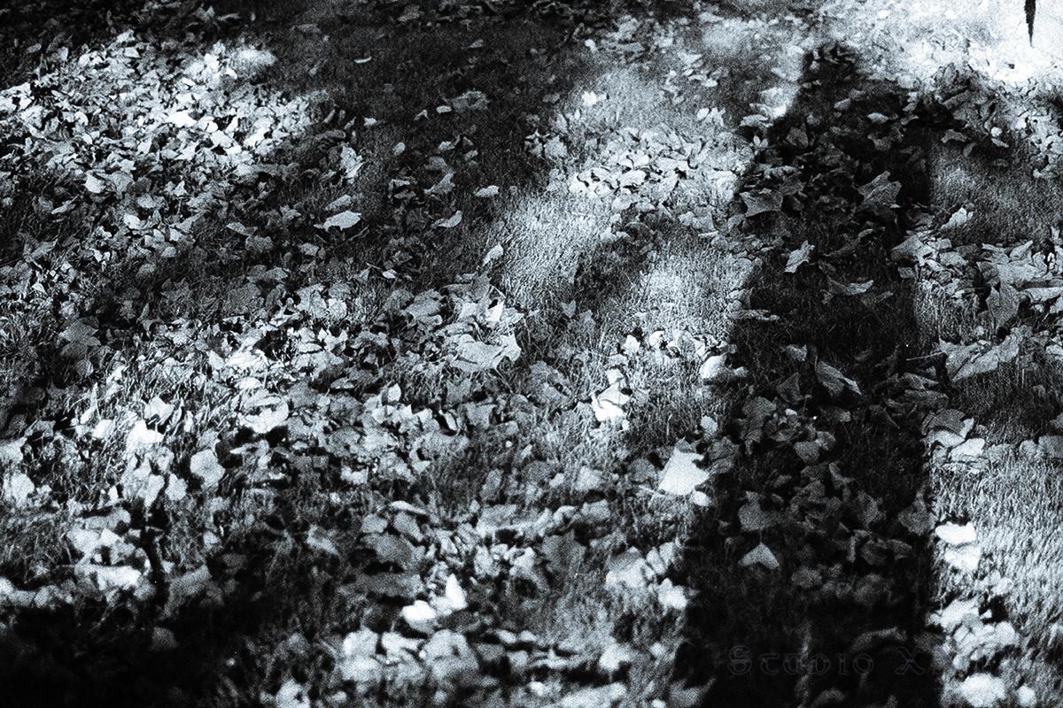 Dead-Abstrakts_04