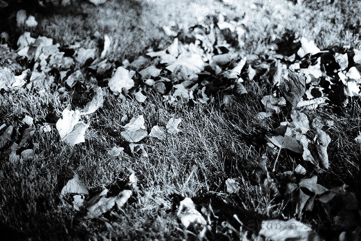 Dead-Abstrakts_06